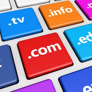 Website Domain Names